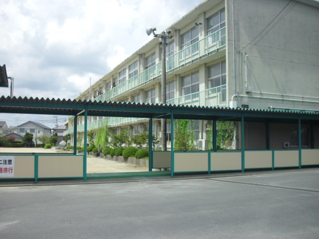 Cheap Hotels Near Kc Airport